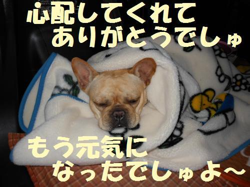 111_17convert_20111012233349.jpg
