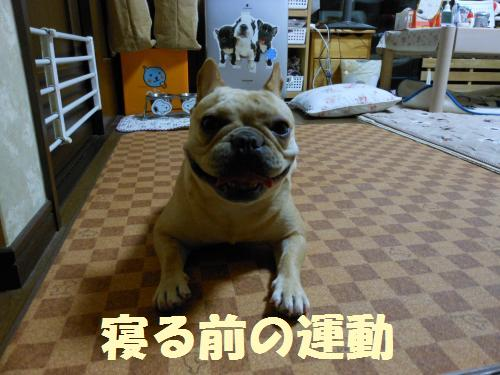 111_1convert_20111024000121.jpg