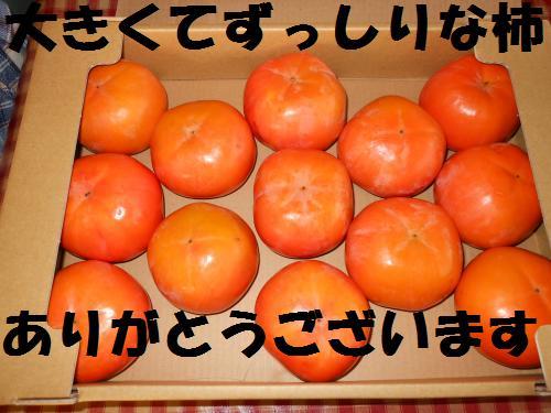 111_1convert_20111117003549.jpg