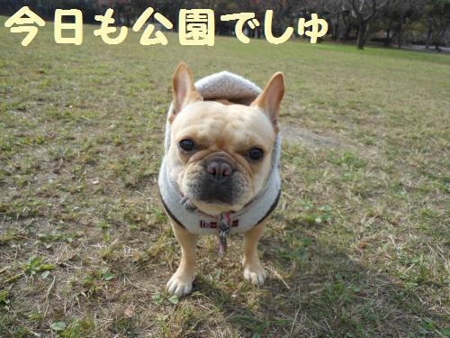 111_1convert_20111130230237.jpg