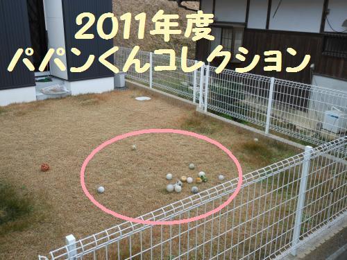 111_1convert_20111226023444.jpg