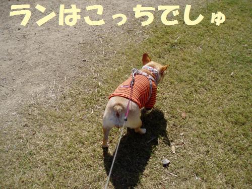 111_2convert_20111005232338.jpg