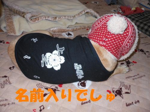 111_2convert_20111011000331.jpg