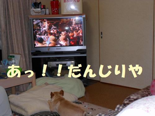 111_2convert_20111024000356.jpg
