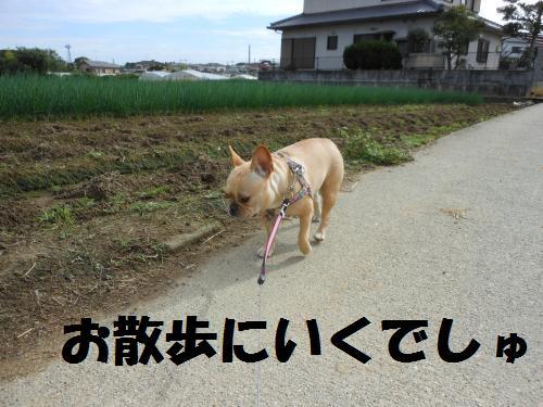 111_2convert_20111026001957.jpg