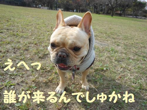 111_2convert_20111130230319.jpg