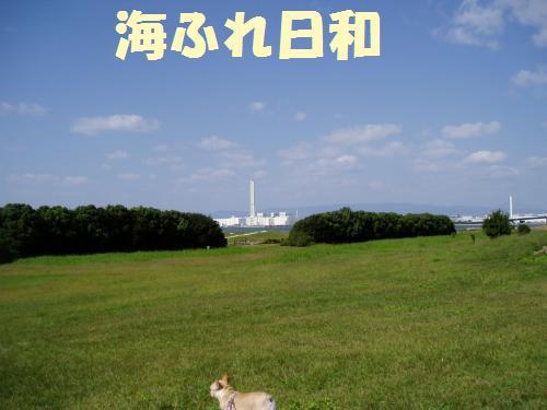 111_3convert_20111008011722.jpg