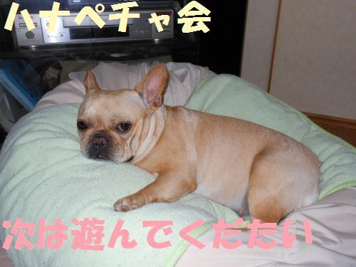 111_3convert_20111024000502.jpg