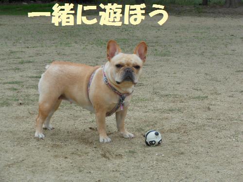 111_4convert_20111111233551.jpg