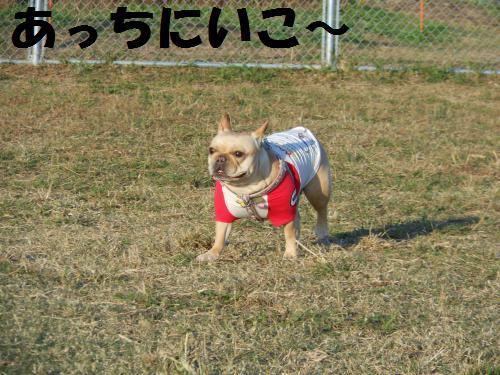 111_5convert_20111117003921.jpg