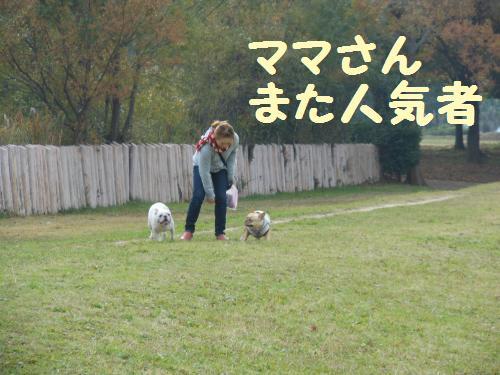 111_5convert_20111130230556.jpg