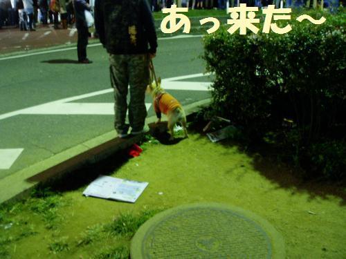 111_7convert_20111003230653.jpg