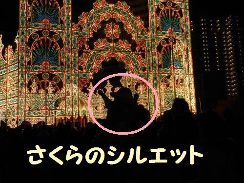 111_7convert_20111208004414.jpg