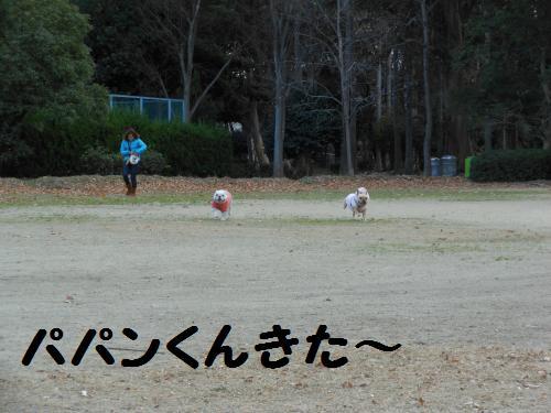 111_8convert_20111226024139.jpg