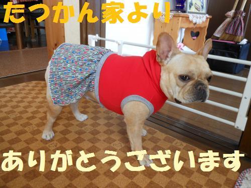 111_9convert_20111026002606.jpg