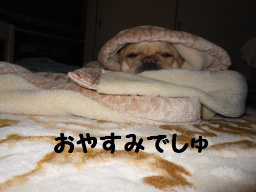 111_9convert_20111123224921.jpg