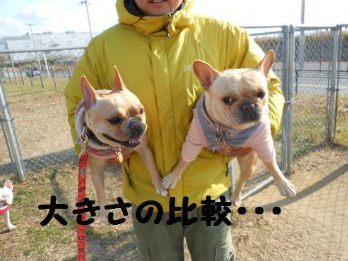 112_16convert_20111218195925.jpg
