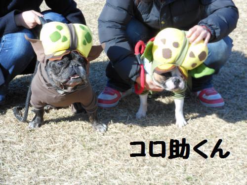112_8convert_20111218195036.jpg