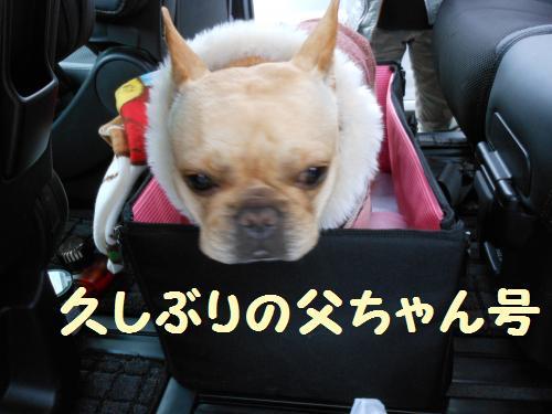 222_12convert_20120112231933.jpg