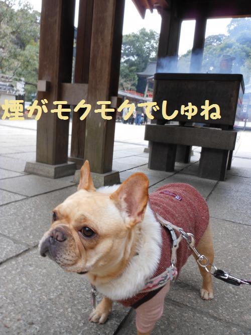 222_14convert_20120112232133.jpg