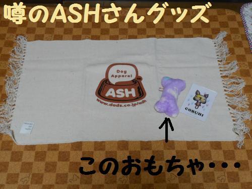 222_2convert_20120109224807.jpg