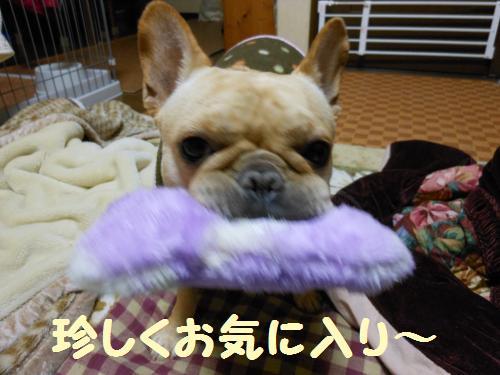 222_3convert_20120109224930.jpg