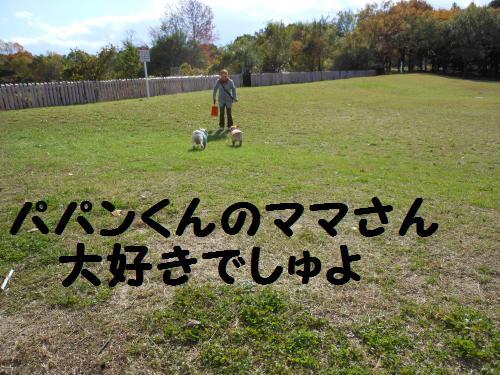 4-2009-10-11+004_convert_20111127233937.jpg