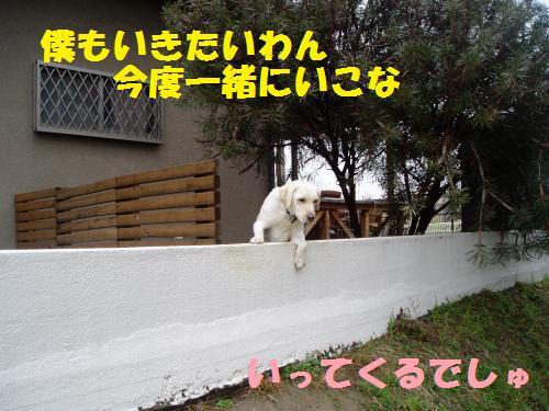 dc030718_convert_20110307192953.jpg
