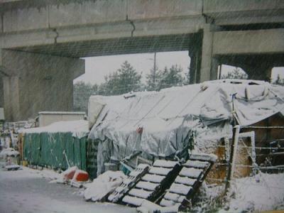 032三番瀬犬舎 雪