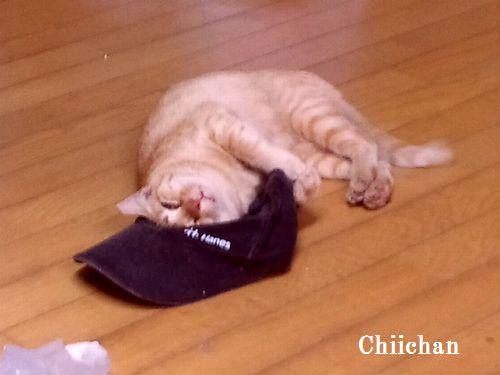 chichan29.jpg