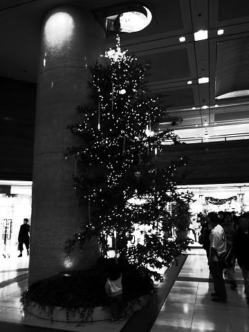 日曜日の横浜