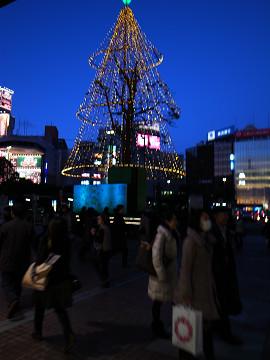 年明けの横浜