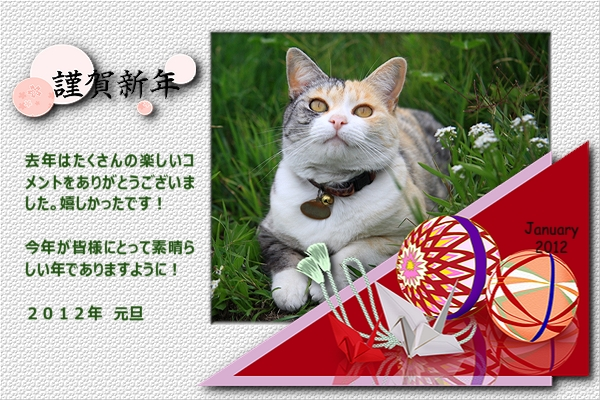 2012 New Year_s card2