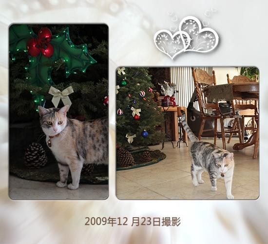 FC2_Dec25_5.jpg