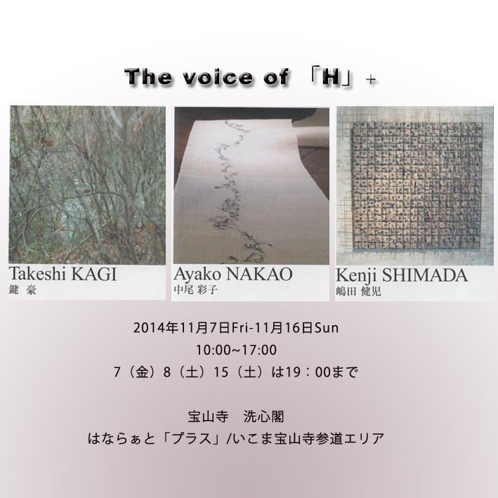 HANARA-TO6.jpg