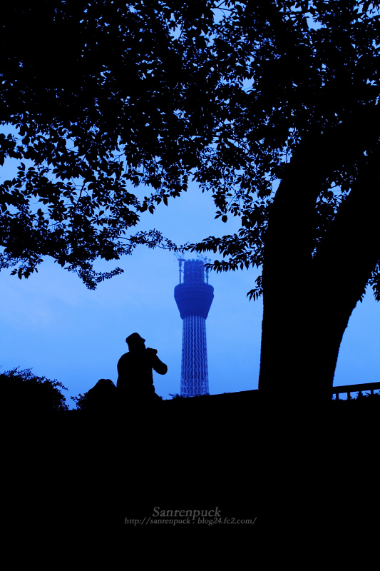 TOKYO SKY TREE #02