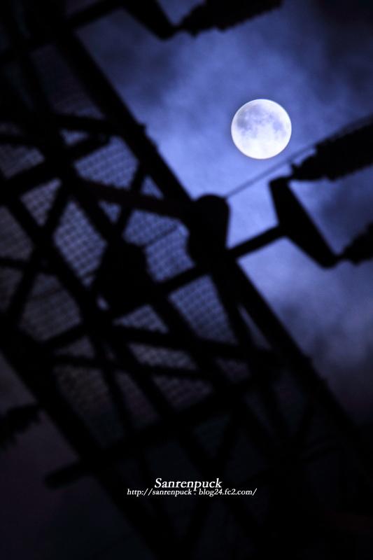 十六夜お月さん