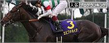 第75回 菊花賞01