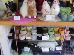 20alpaca shop