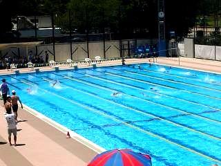 港区水泳大会(プールその2)