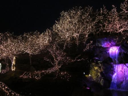 bihoku201312-5.jpg