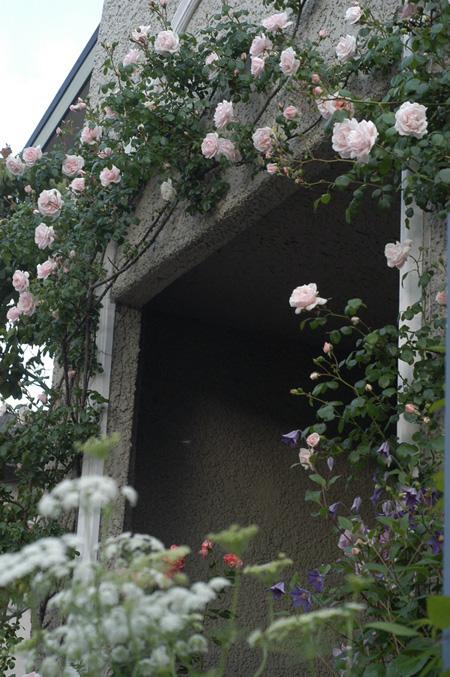 sanyochurchgarden2010526-1.jpg