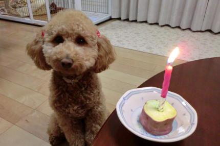 スペシャルおいもさんケーキ!