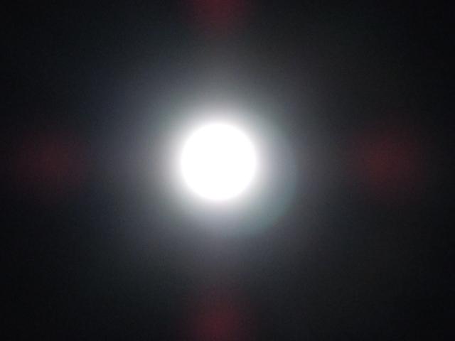 DSCN3103.jpg