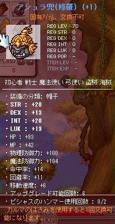 Maple110507_163646.jpg