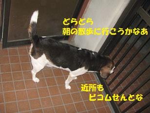 001_20130824072532ea1.jpg