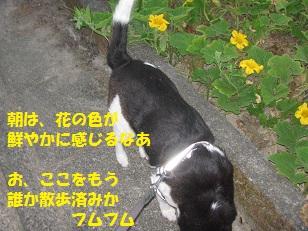 002_20130824072534ff4.jpg