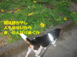 003_201308240725351dc.jpg