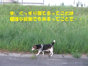006_20130824072612ac4.jpg
