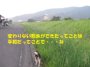 007_201308240726148c6.jpg